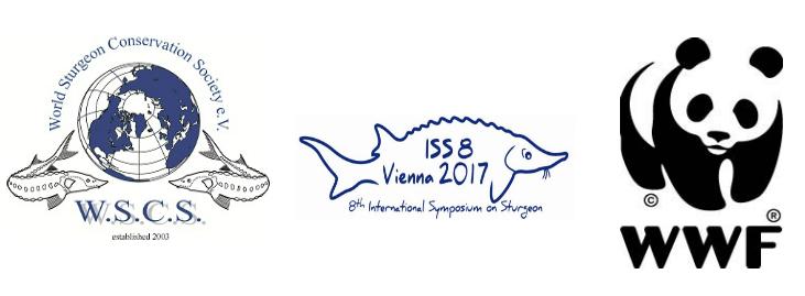 VD image - De Ziua Mondială a Peștilor Migratori, WWF și Societatea Mondială pentru Conservarea sturionilor cer  factorilor de decizie luarea unor acțiuni concrete în vederea protejării sturionilor