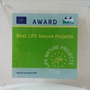 """Award 1 300x300 - """"Protejați sturionii, cel mai valoros dar al Dunării"""" a câștigat Premiul LIFE ca finalist în categoria """"Natură și biodiversitate"""""""