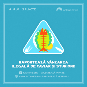 slice6@2x 300x300 - WWF-România lansează ghidul educațional Exploratori ai Dunării și Sturionilor din Dunăre