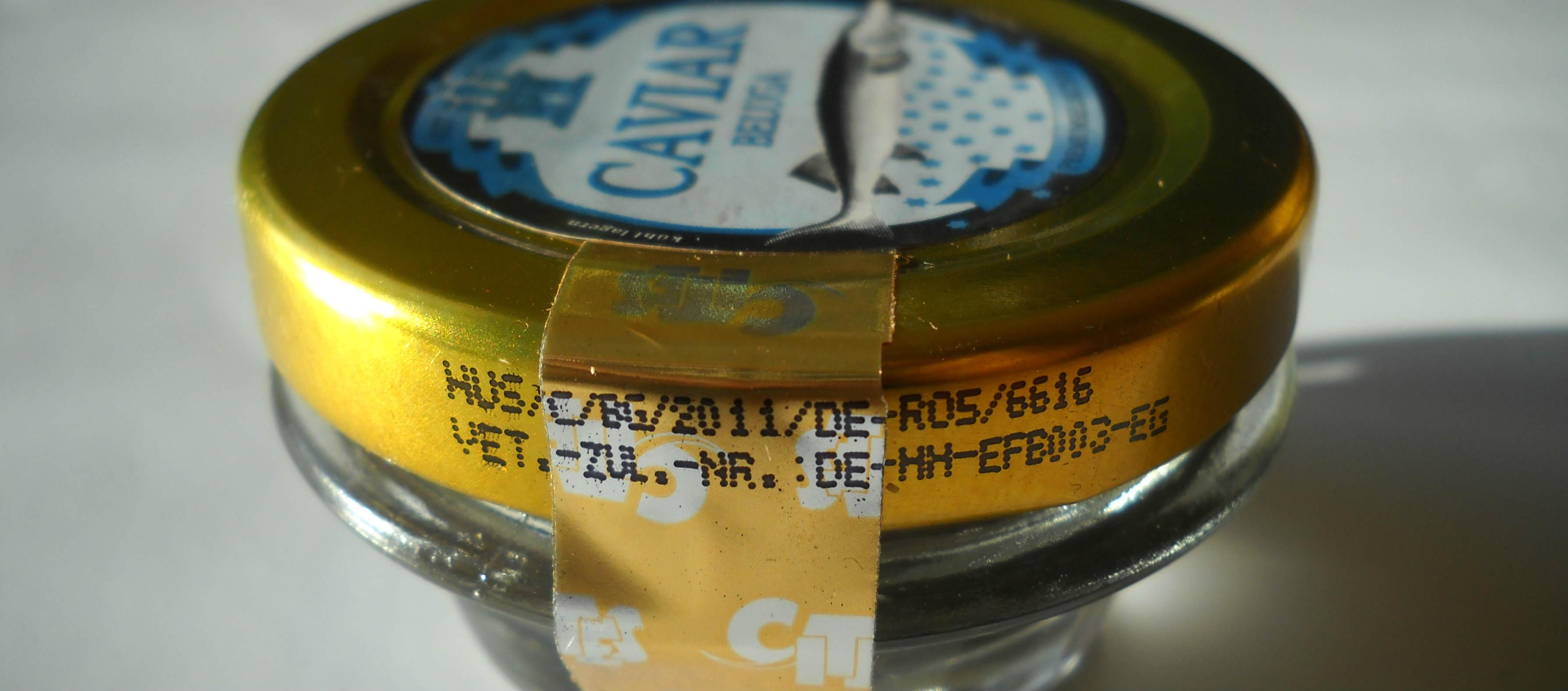 Caviarul în comerț – ceea ce trebuie să știți să nu faceți rău sturioniilor sălbatici