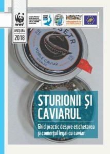 Caviar brochure RO 121218 page 001 1 214x300 - Rezultatele proiectului