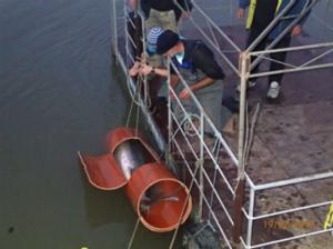 Picture1 300x224 - Morun salvat din mâinele unui braconier