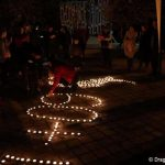 EH GL Dragos Mihai Gherlac clasa a IX a A 5 150x150 - Galaţi and Jurilovca celebrated their first Earth Hour with breath-taking events organised by the local AYDS clubs