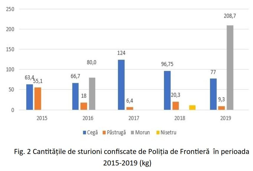 date ro - Poliția de Frontieră a întocmit anul trecut 7 dosare penale pentru braconaj la sturion