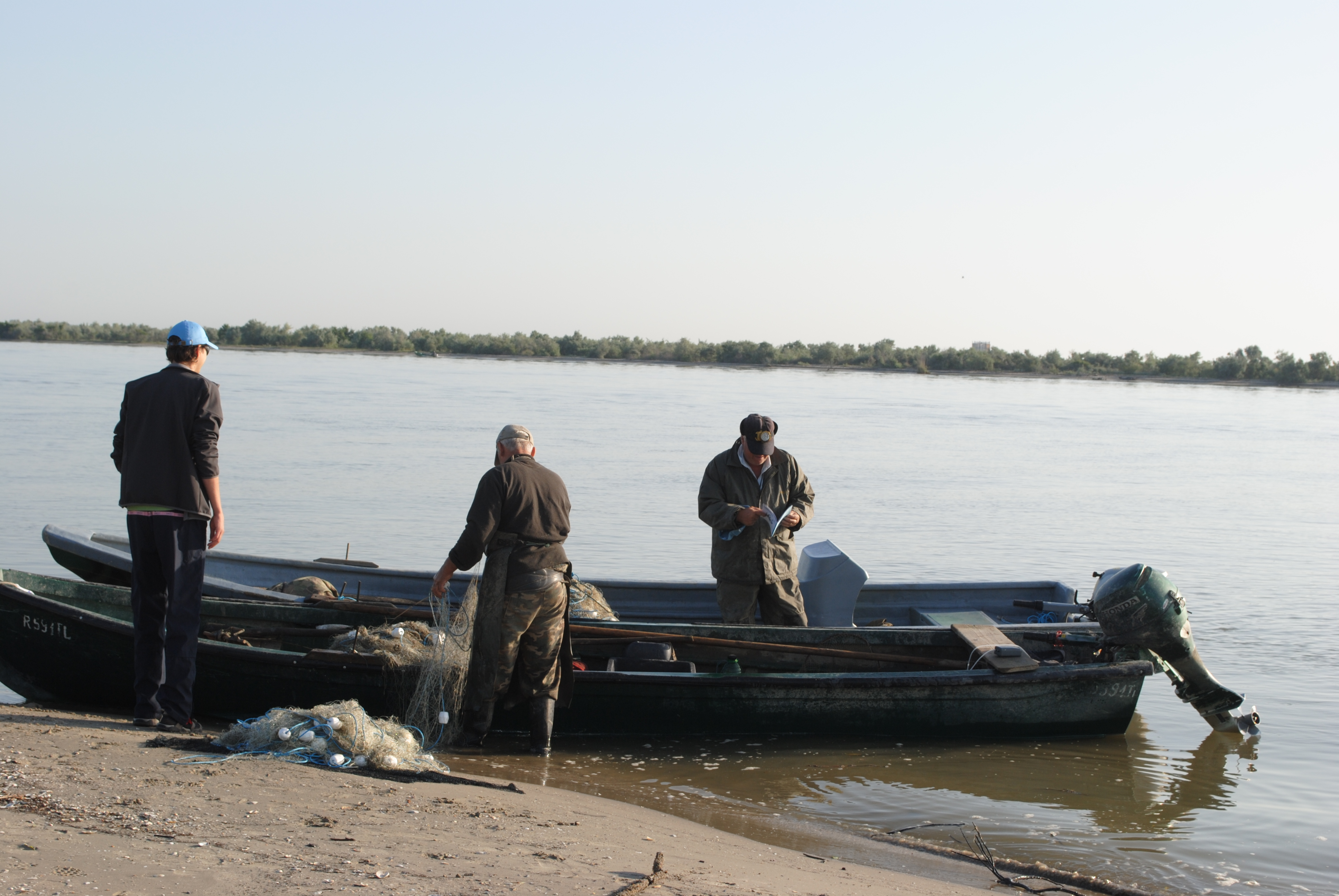 Continuarea prohibiției pentru pescuitul sturionilor, pe masa autorităților