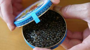 Beluga caviar©Hannes Greber WWF Austria 300x169 - STUDIU DE PIATA PRIVIND TRAFICUL CU PRODUSE DIN STURION: Aproape o treime din produsele verificate au fost ilegale